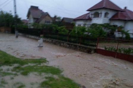 inundatii-berbesti